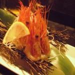 BC sweet shrimp